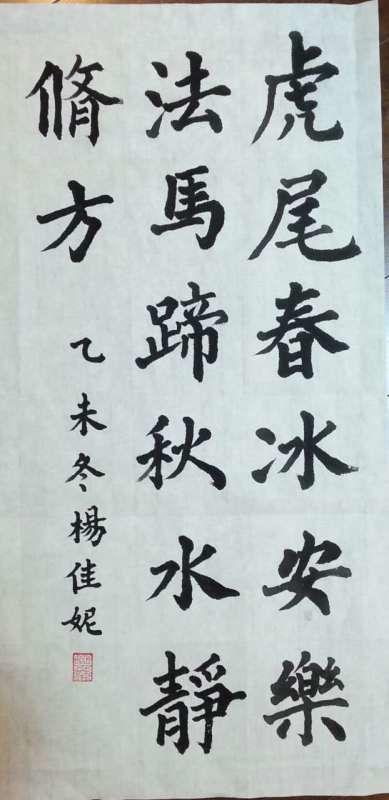 杨佳妮书法